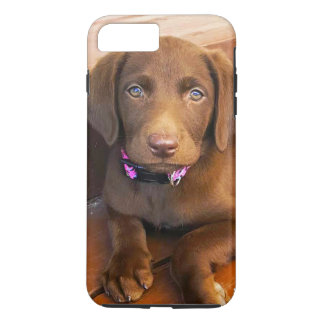 Sadie iPhone Cover Henry's_World_Today's Best Bud