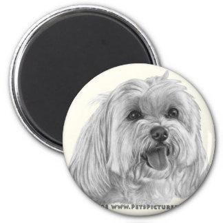 Sadie, Maltese 2 Inch Round Magnet