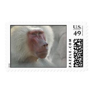 Sadness Postage Stamps