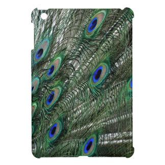 Saetines pródigos del pavo real en verde