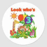 Safari 3rd Birthday  Tshirts and Gifts Classic Round Sticker