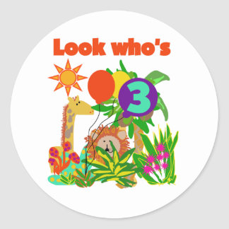 Safari 3rd Birthday  Tshirts and Gifts Classic Round Sticker