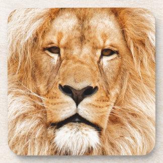 Safari África de rey Of The Jungle Face del león Posavasos De Bebida