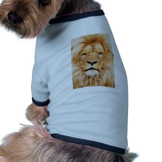 Safari África de rey Of The Jungle Face del león Camiseta De Perrito
