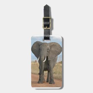 Safari African Jungle Destiny Animals Elephants Bag Tag