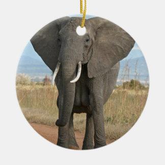 Safari African Jungle Destiny Animals Elephants Ceramic Ornament