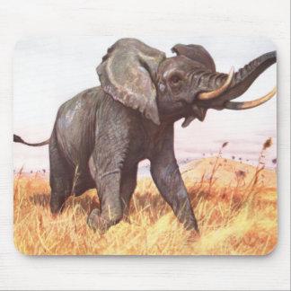 Safari African Jungle Destiny Animals Elephants Mouse Pads