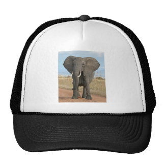 Safari African Jungle Destiny Animals Elephants Trucker Hat