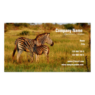 Safari business cards - customizable