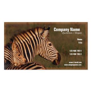 Safari business cards, zebras - customizable