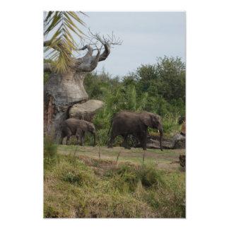 Safari Dreams 8 Photo Print