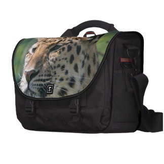 Safari Leopard Wild Cat Safari Cute African Purr Laptop Bag