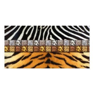 Safari Prints Card