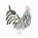 Safari Rooster Zebra Postcard