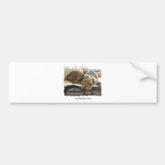 Safe At Home with a Professional Pet Sitter Bumper Sticker