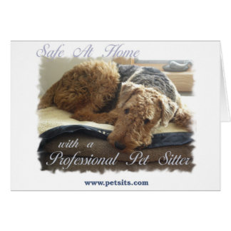 Safe At Home with a Professional Pet Sitter Card