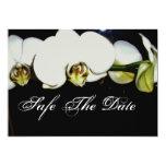 safe the date-  weisse Orchideen Personalisierte Einladung