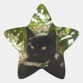 Safe up here star sticker