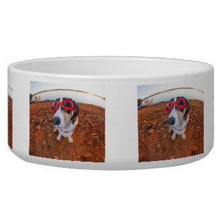 Safety Dog Bowl