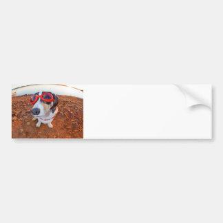 Safety Dog Bumper Sticker