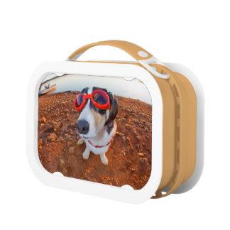 Safety Dog Lunch Box
