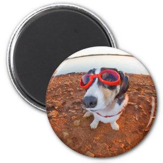 Safety Dog Fridge Magnet
