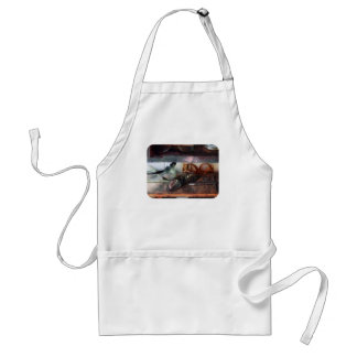 Safety Glasses Adult Apron