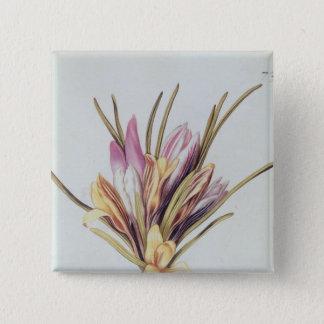 Saffron or Crocus, from 'La Guirlande de Julie' Pinback Button