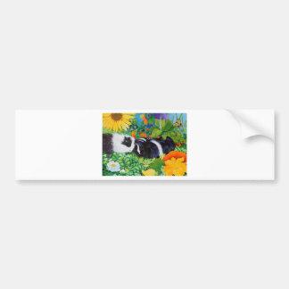 Safi and Zaria Guinea Pigs Bumper Sticker