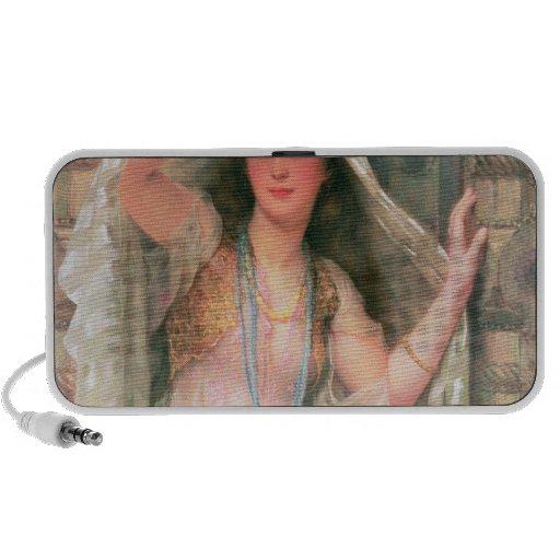 Safie, 1900 PC altavoces