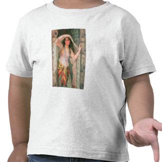 Safie, 1900 t shirts