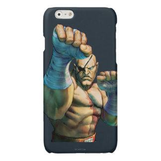 Sagat Ready to Block Glossy iPhone 6 Case