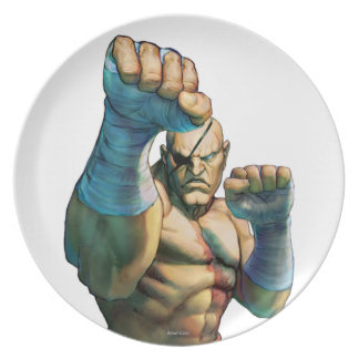 Sagat Ready to Block Party Plates