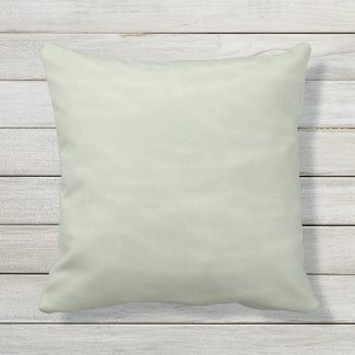 Sage and Cream Marbled Outdoor Pillow 16x16