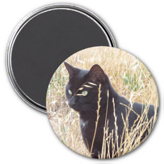 Sage And Wild Oats Magnet