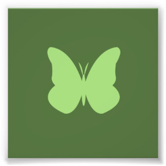 sage butterfly photo print