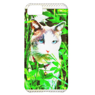 Sage Case For iPhone 5C