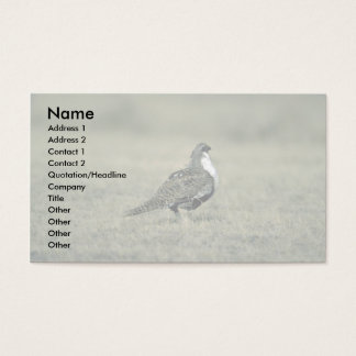Sage grouse business card