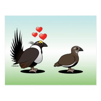 Sage Grouse Love Postcard