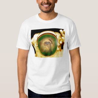 Sage in the Sky T Shirt