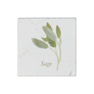 Sage - Marble Stone Magnet
