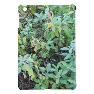 Sage plant iPad mini case