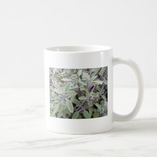 Sage sulks coffee mug