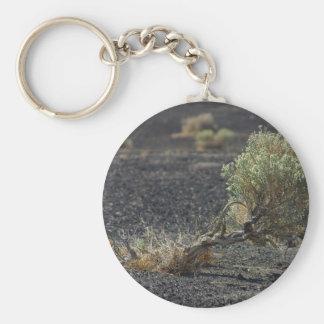 Sagebrush Desert Key Chain