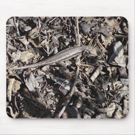 Sagebrush Lizard Mousepads