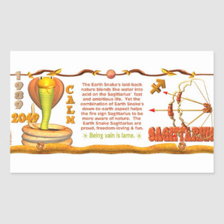 Sagitario de la serpiente de la tierra del zodiaco pegatina rectangular