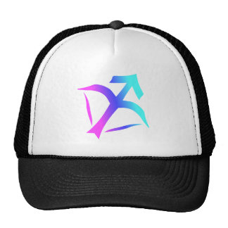 Sagittarius zodiac symbol hat