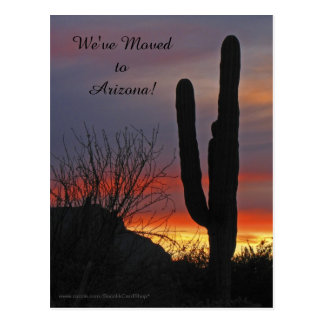 Saguaro at Sunset, New Address Announcement Postcard