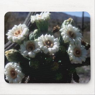 Saguaro Blossoms Mousepad