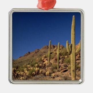 Saguaro cacti and Tucson Mountains, Tucson Square Metal Christmas Ornament